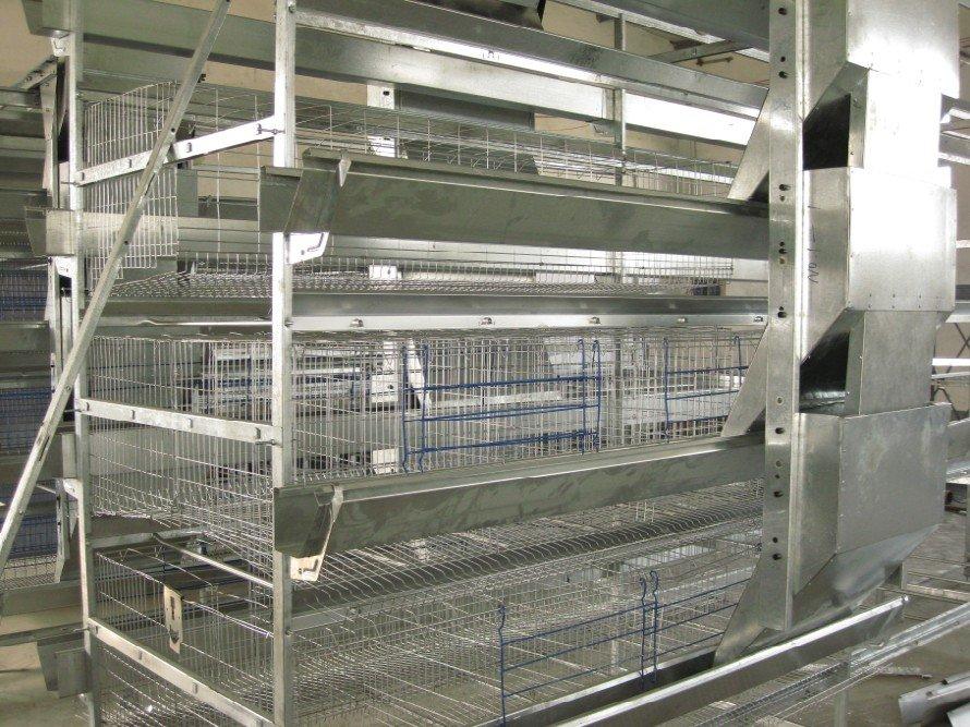 Напольное оборудование для выращивания бройлеров 31