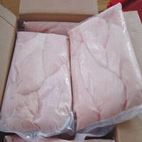 QUALITY HALAL FROZEN CHICKENS FOR SALE