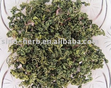 Newly harvest Jiaogulan tea,gynostemma pentaphyllum tea  - The Herb of Immortality