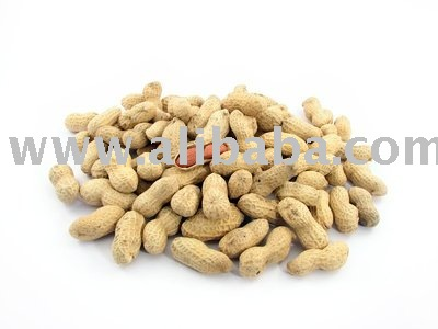 Peanut , Walnut , Raw Cashew nut , Palm Kernel and Sunflower seeds for sale