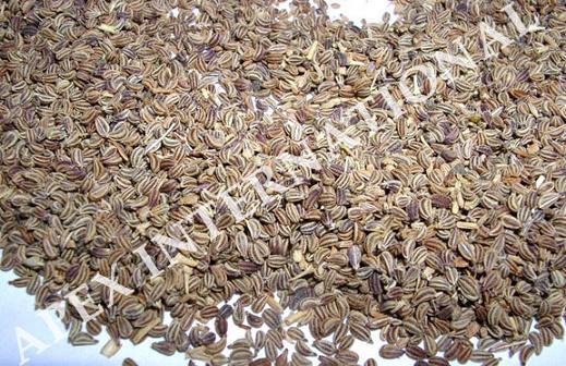 Bishop's Weed, Ajwain, Carom, Carum Copticum