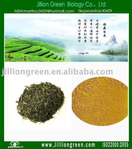 Milk   Green   Tea  Extract