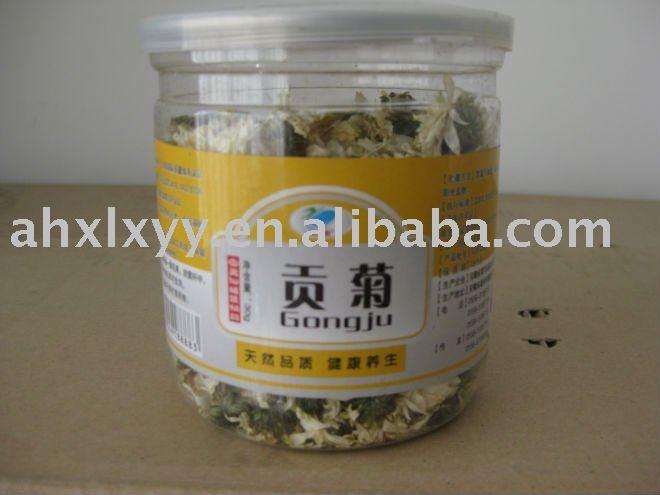 Tribute Chrysanthemum