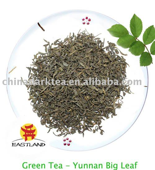 Yunan Big Leaf tea Chinese Green tea herb tea
