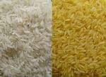 long white rice,basmatic rice,brown rice