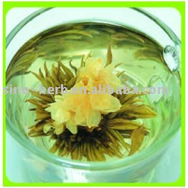 Flowering  Tea--Flower Fairy