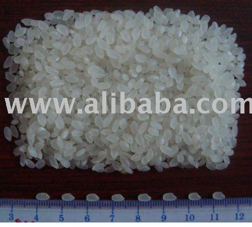 Vietnamese Round White Grain Rice Japonica 5% Broken
