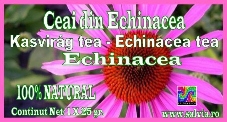 Echinacea tea, Ceai din Echinacea, Kasvirag tea.