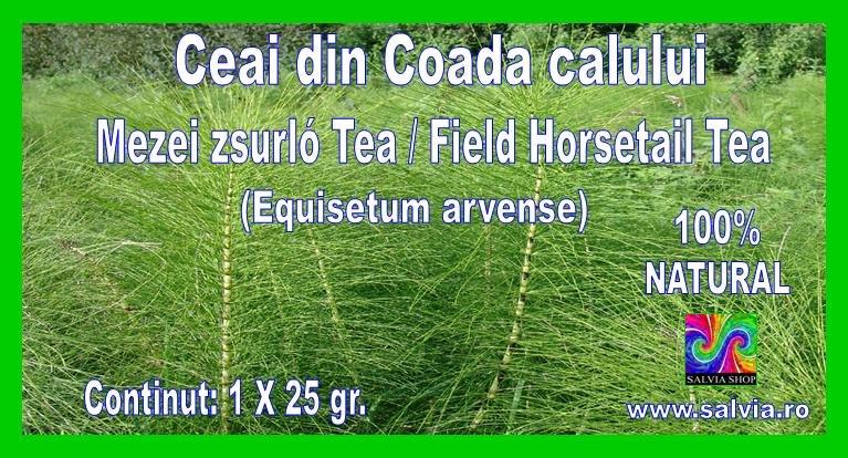 Field Horsetail tea - Ceai din coada calului