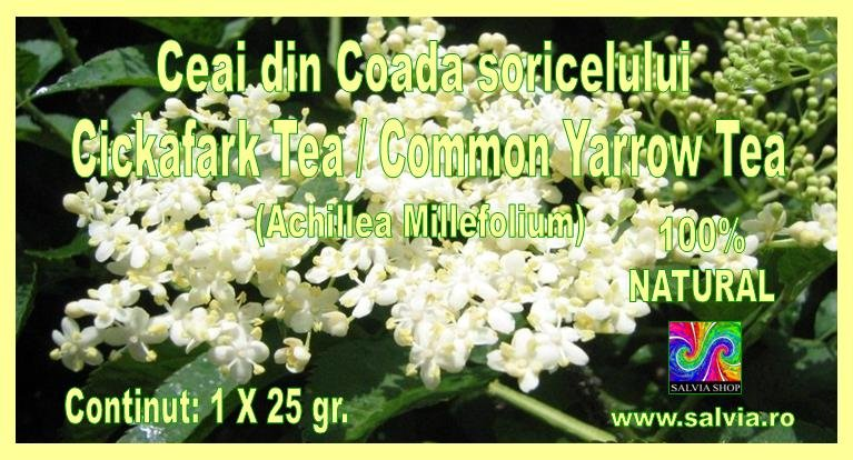 Common Yarrow tea - 100 % organic tea