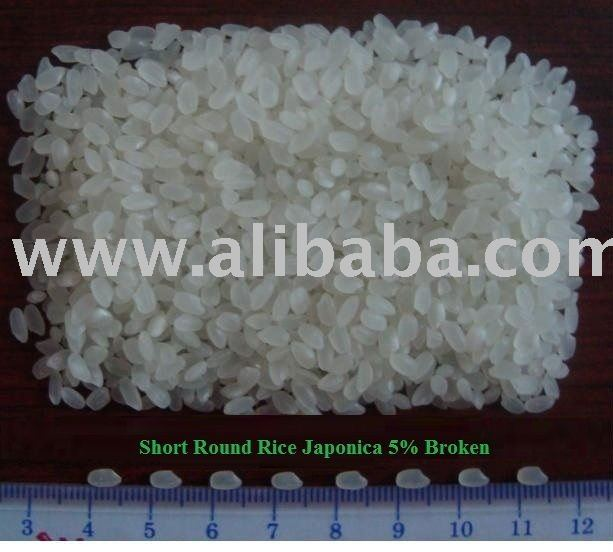 Round Grain Rice -Sushi Rice /Calrose / Japonica Rice