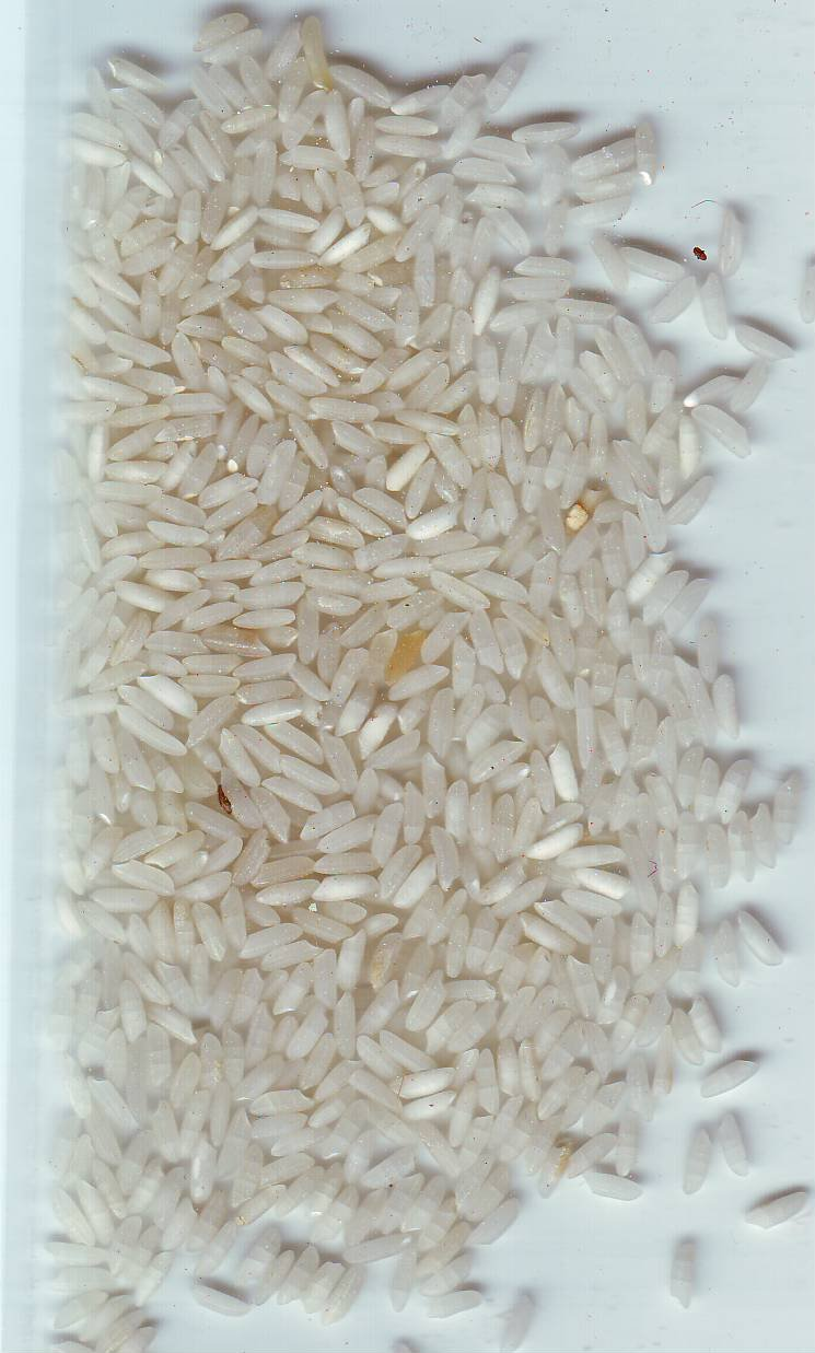 Long Grain Rice Broken