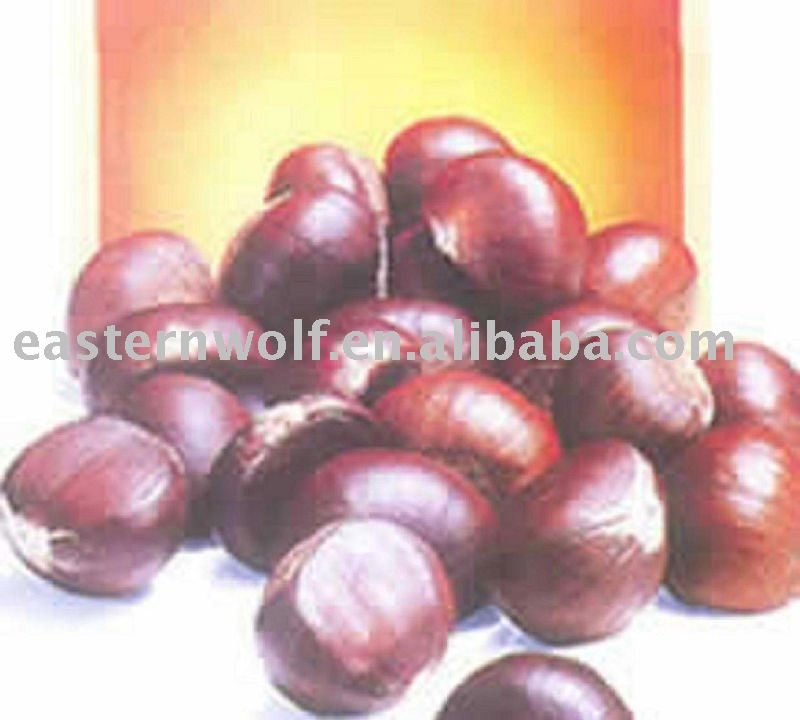 Chinese Chestnut in Gunny Package