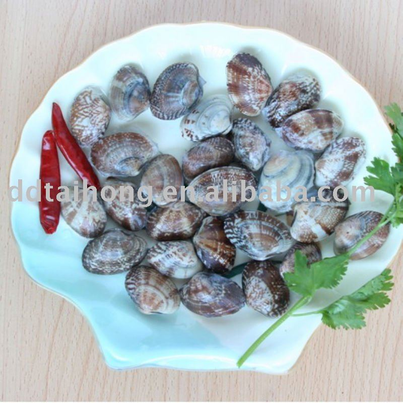 Frozen boiled short necked clam snack food