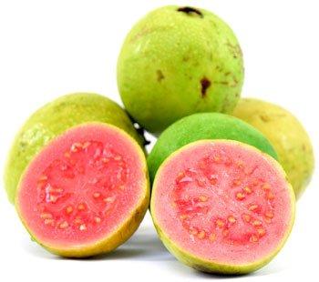 Motiro Trade Ltda  - Orange juice concentrate 66 brix