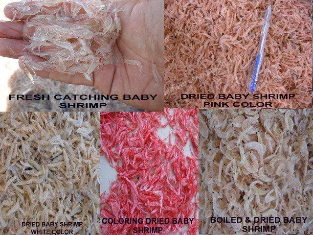 DRIED BABY SHRIMP - AMI EBI ( Acetes erythraeus Nobili )