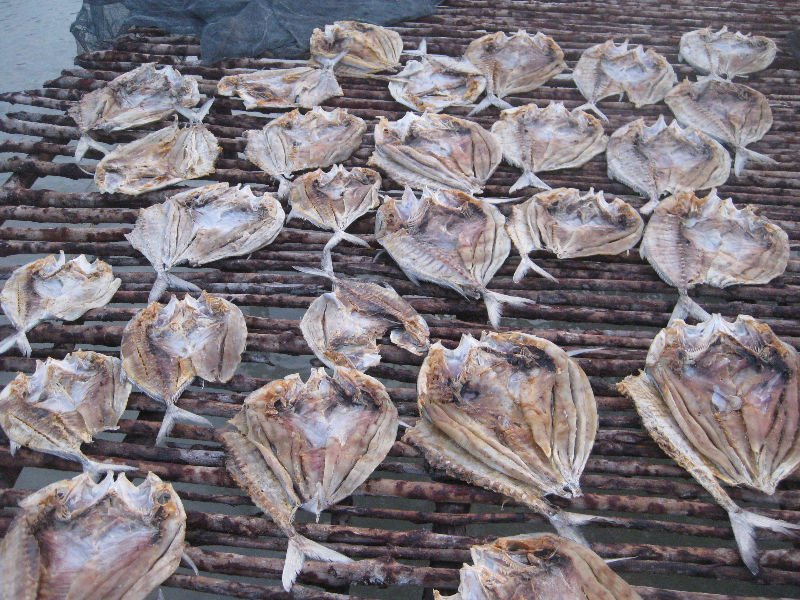 Dried Salted Fish - Lome/Lumi ( Lumi Cracker Fish ) products ...
