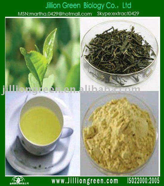 Instant Green Tea  Extract Powder Health Food Tea Polyphenol