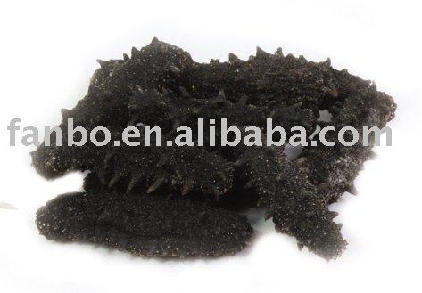 Dried Paracaudina Chilensis Var
