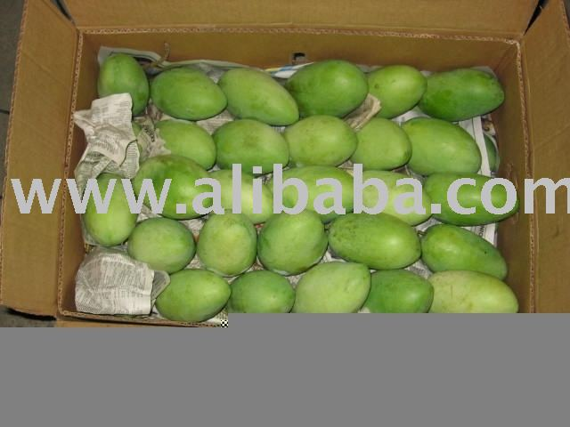 Fresh Mango (Carabao Variety)