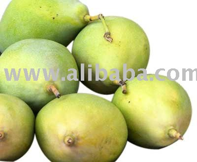Fresh African Mangoes For Sale Products Cameroon Fresh African