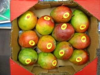 http://www.21food.com/products/all-types-of-pakistani-mangoes-278407 ...