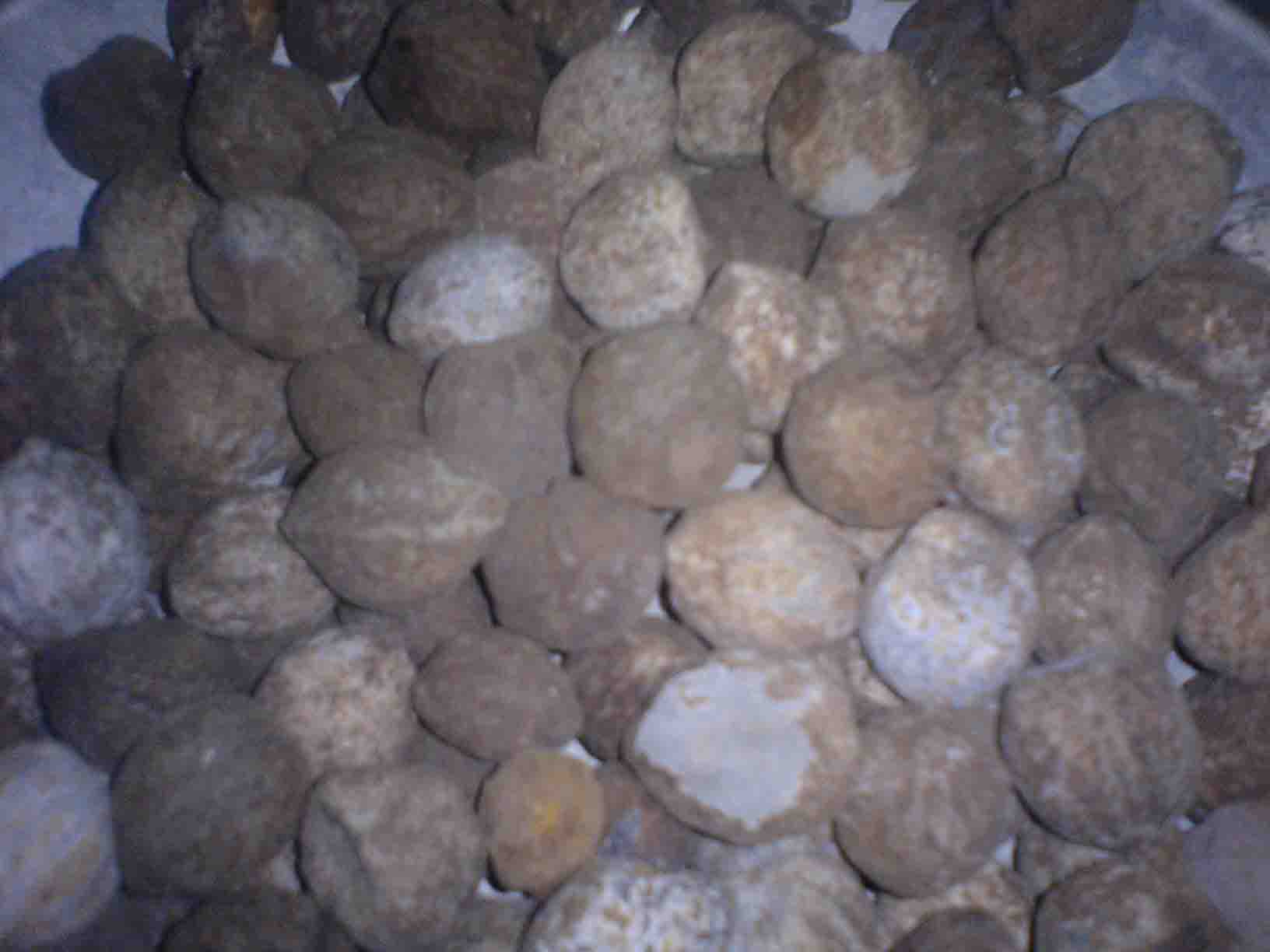 Raw Kukui Nut