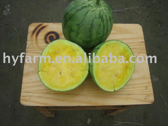 Yellow watermelon, watermelon, fruits, melon
