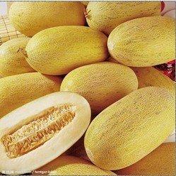 Dried Sweet Melon/Hami Melon Chips