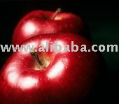 High quality of APPLE  juice concentrate