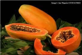 Fresh Papaya From Vietnam