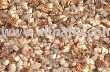 clean sun  dry   shrimp   shell  for sale