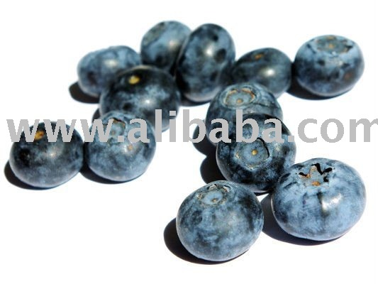 Organic Blueberry Juice Concentrate & Puree