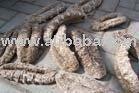 SUSU TOKEK  Sea Cucumber