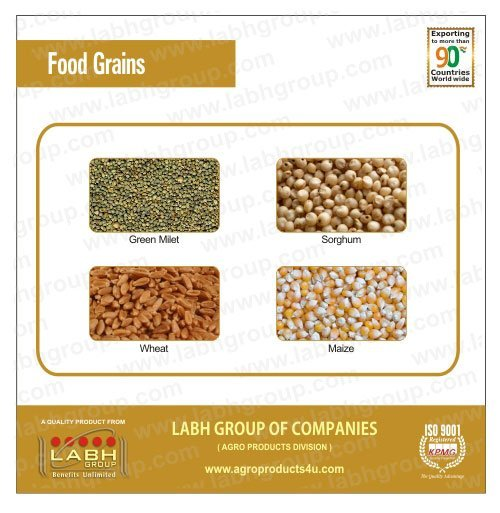 rice & grains|Wheat from India suppliers,exporters on ...