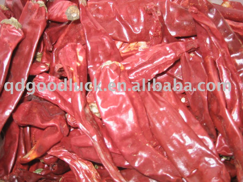 the newest crop  yidu  chili, yidu   paprika ,  yidu  chilli