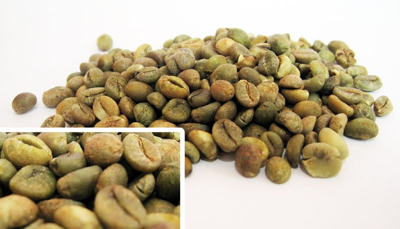 Robusta - Toraja Coffee Bean (Green Coffee Bean)