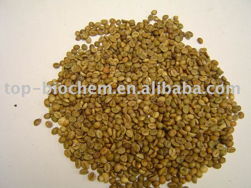 Green coffee Powder Extract
