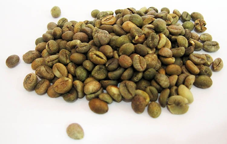 Arabica - Toraja Coffee Bean (Green Coffee Bean)