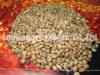 Yunnan Green coffee bean