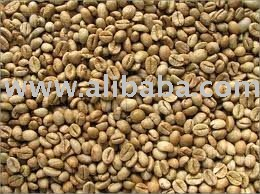 Robusta coffee bean
