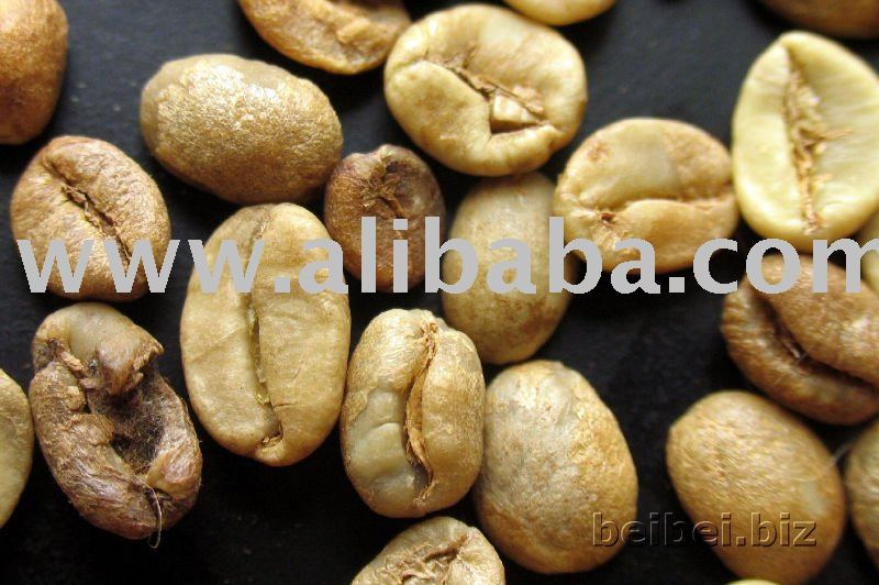 high quality robusta coffee bean,from owned farm low price