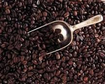 ARABICA AND RUBUSTA COFFEE BEANS AVAILABLE
