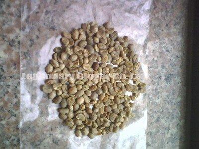 Yunnan coffee beans