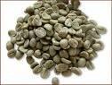 ROBUSTA COFFEE BEAN GRADE 1 ,S16