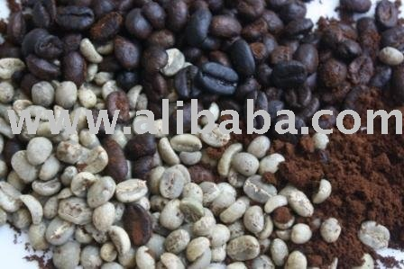 Greenbean Arabica Coffee