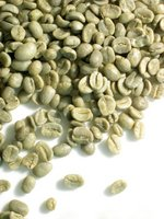 Arabica and Robuster Coffee Beans Supplier Ready for Sale
