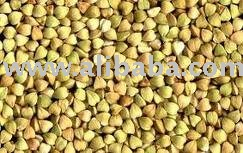 all kinds of buckwheat for sale at negotiable prices