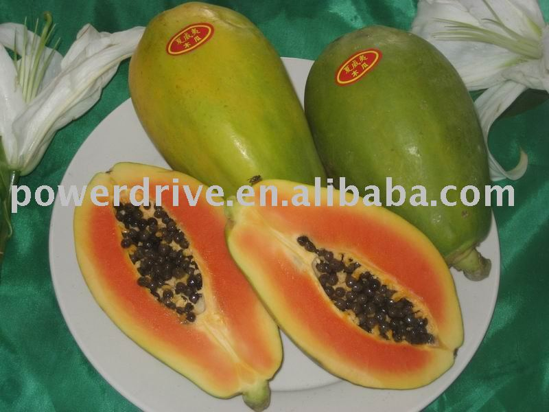 how to make papaya powder at home