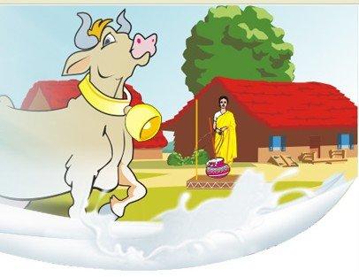 Relish Desi Ghee -buffalo ghee